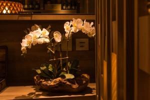 Orquídeas Artificiais - Okka Interiores